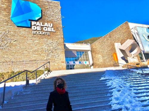 """Indignació del PS per la gestió de """"l'afer del Palau del Gel"""""""